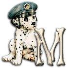 Hunde alphabete