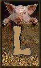 Schweine alphabete