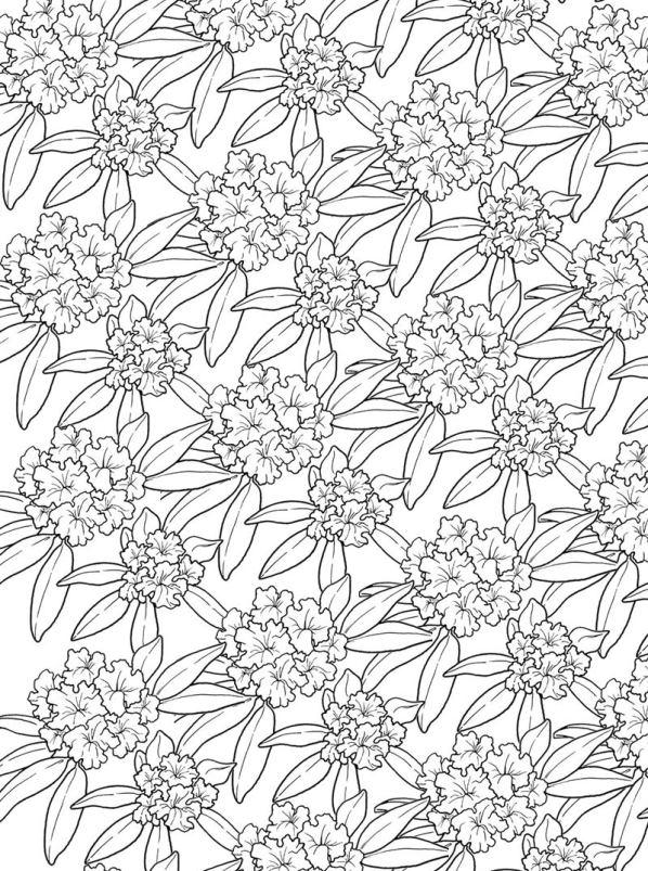 Blumen fur erwachsene ausmalbilder