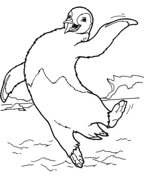 pinguin ausmalbilder  animaatjesde
