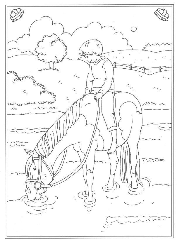 Kleurplaten Paarden Dressuur Reitschule Ausmalbilder Animaatjes De