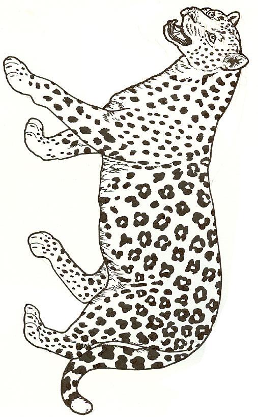 Panther ausmalbilder