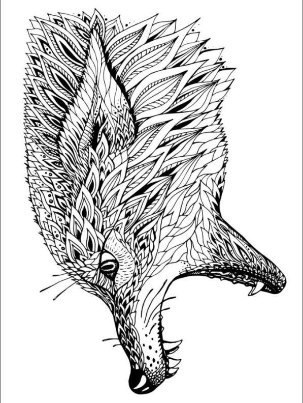 Malvorlage Tiere Fur Erwachsene Ausmalbilder Amkau