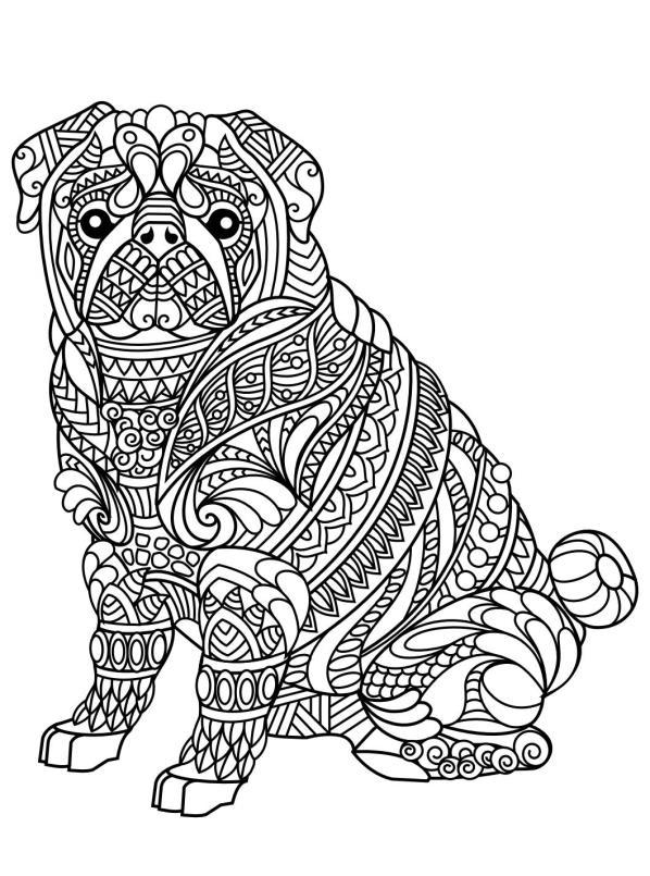 Volwassen Kleurplaten Honden Malvorlage Tiere Fur Erwachsene Ausmalbilder Zr841