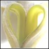 Banane avatare