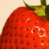 Erdbeere avatare