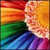 Regenbogen avatare
