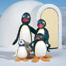 Pingu avatare