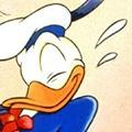Donald duck avatare