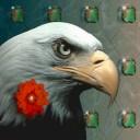 Greifvogel avatare