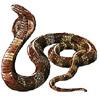 Schlangen avatare