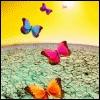 Schmetterlinge avatare