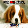 Tiere missbrauch