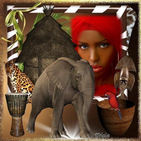 Afrika bilder