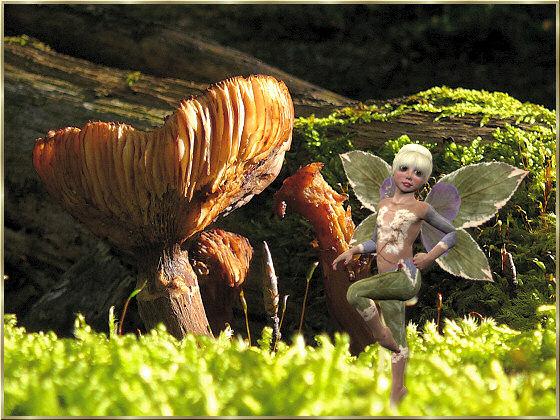 elfen gifs bilder elfen bilder elfen animationen