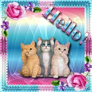 Hallo bilder