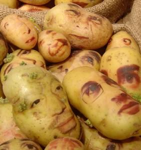 Kartoffel bilder
