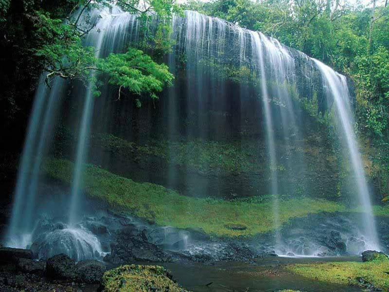 Nature bilder