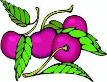 Obst bilder