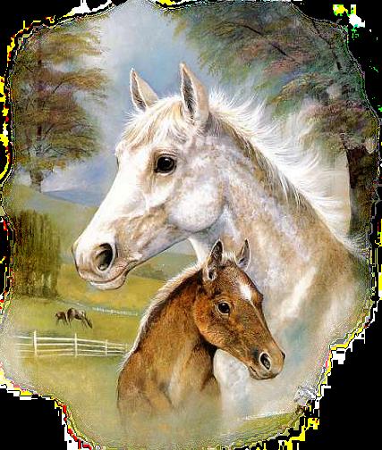 Pferde Bild Animaatjes Paarden 89158