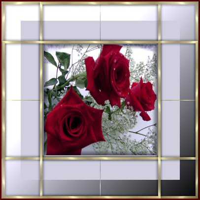 Rosen bilder