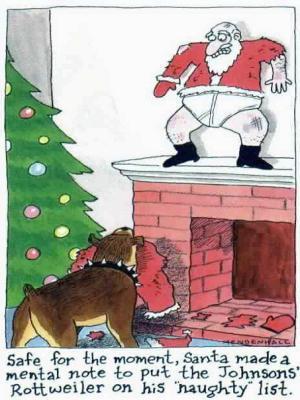 Weihnachten humor bilder