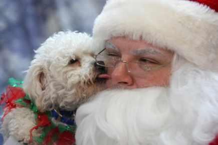 Weihnachts manner bilder