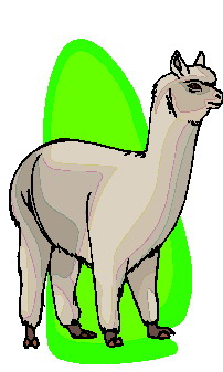 Lama cliparts