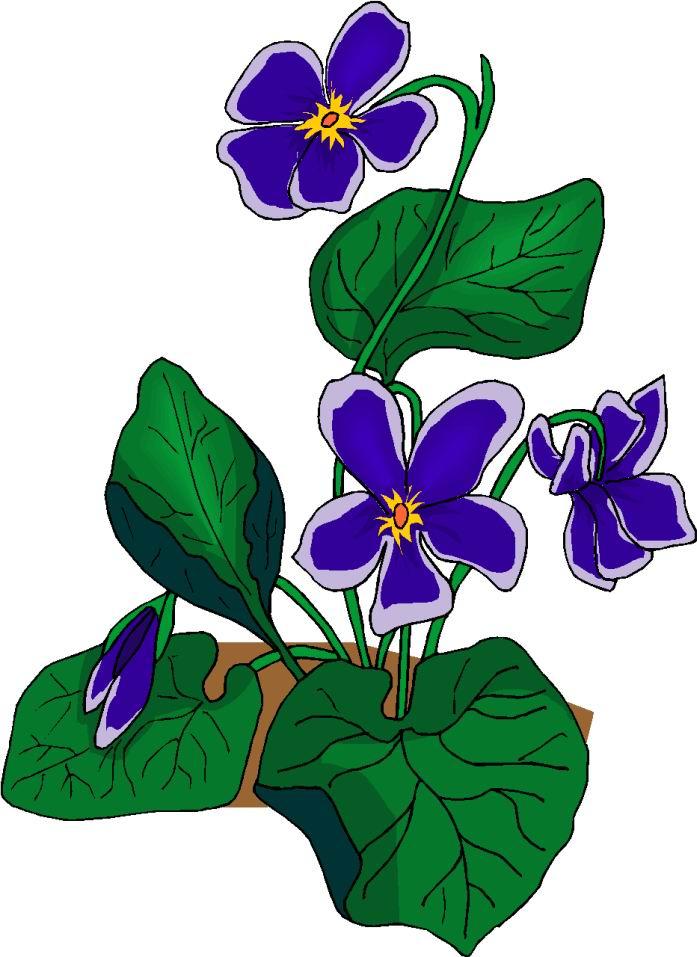 Blumen cliparts