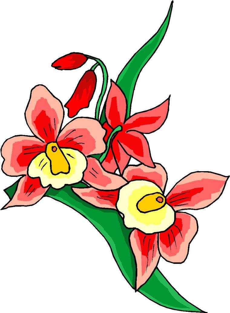 clip art flowers microsoft - photo #30