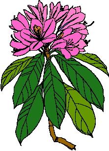 Fruhlingsblumen cliparts