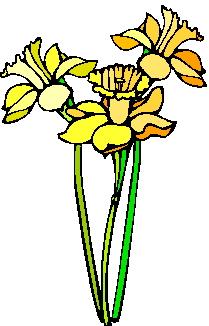 Fruhlingsblumen