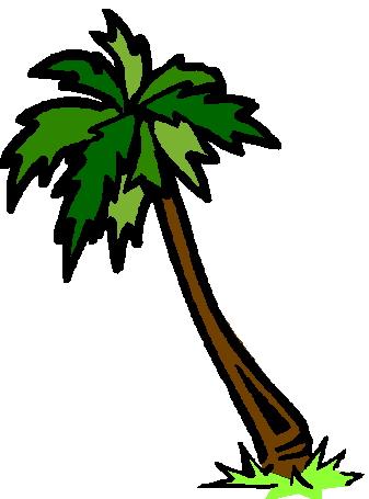 Palme cliparts