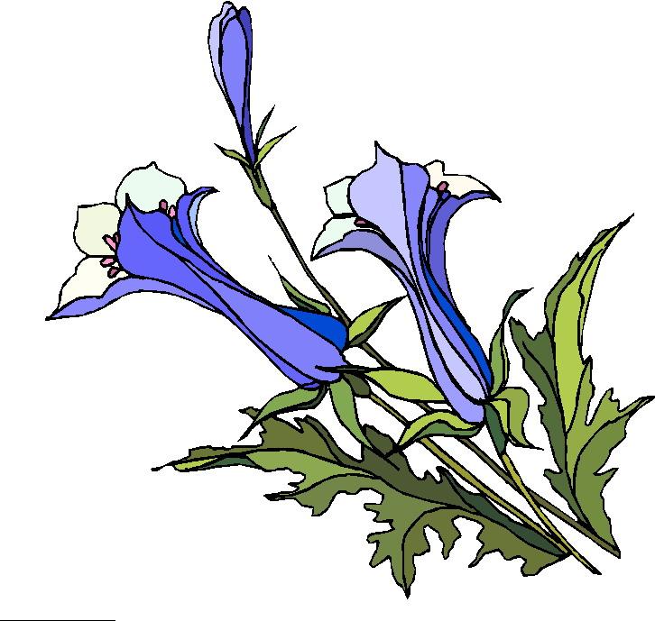 Pflanzen cliparts