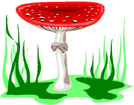 Pilze cliparts