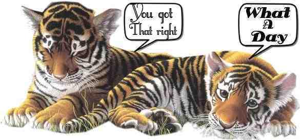 Tigers glitzer bilder
