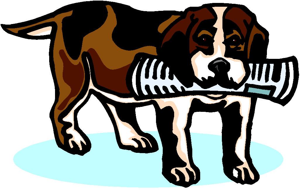 Hund mit zeitung hunde bilder
