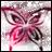 Schmetterlinge icons bilder