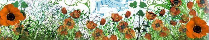 Blumen und natur linien
