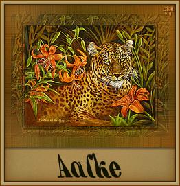 Aafke namen bilder