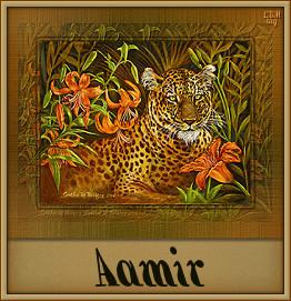 Aamir namen bilder