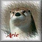Arie namen bilder