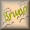 Bruno namen bilder