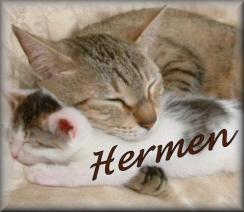 Hermen