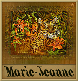 Marie jeanne namen bilder