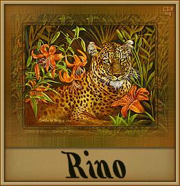 Rino namen bilder