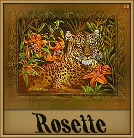 Rosette namen bilder