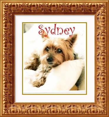 Sydney namen bilder