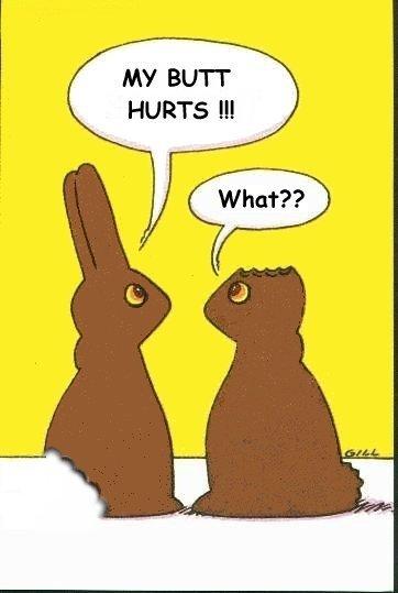 Humor ostern bilder