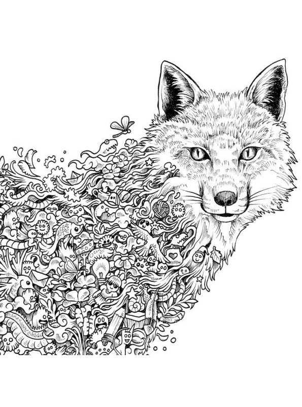 malvorlage  tiere fur erwachsene ausmalbilder psuan